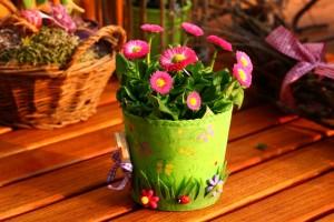 spring-800240_640