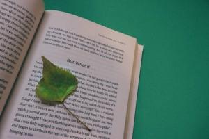 book-912727_1920