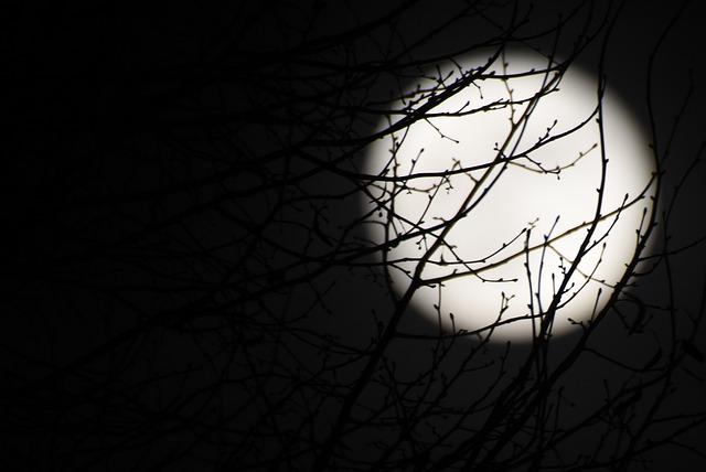 moon-1910082_640